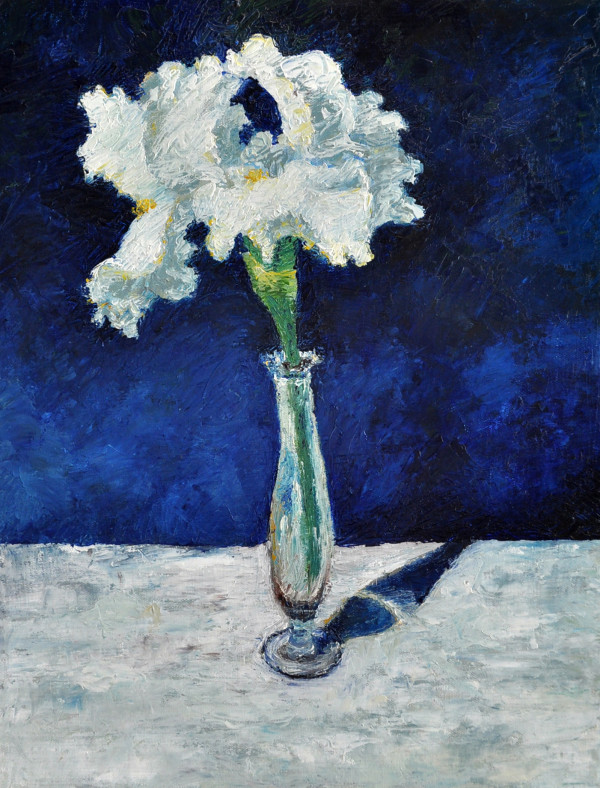 White Iris by Merrilyn Duzy