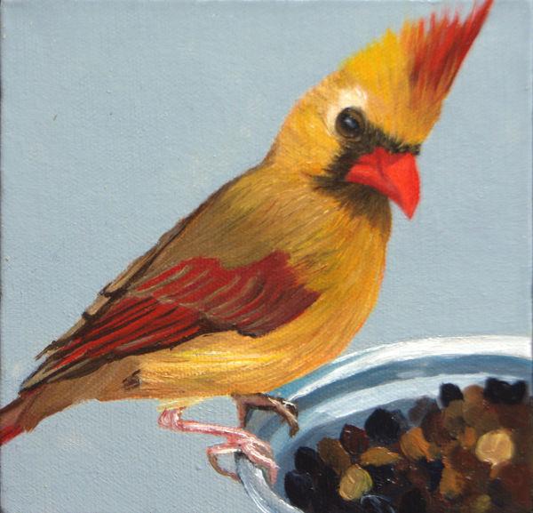 Bird Cam Mrs. Cardinal by Brenda Francis