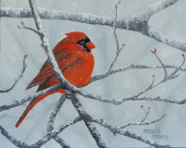 CARDINAL IN THE SNOW by Brenda Francis