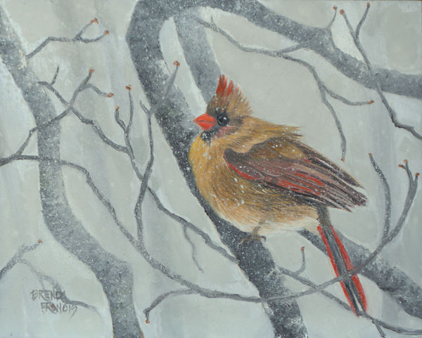 MISS CARDINAL IN THE SNOW by Brenda Francis