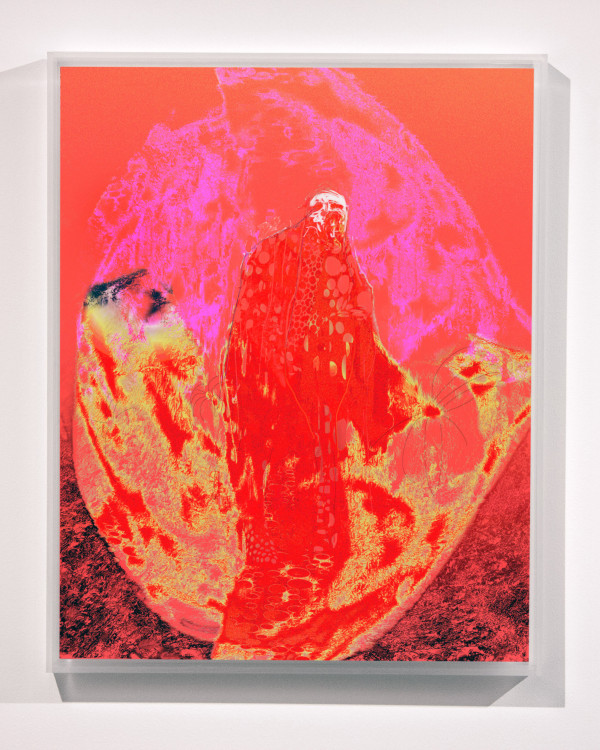 Red Lemon by Alex Fischer