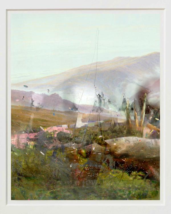 Nature Sounds by Alex Fischer