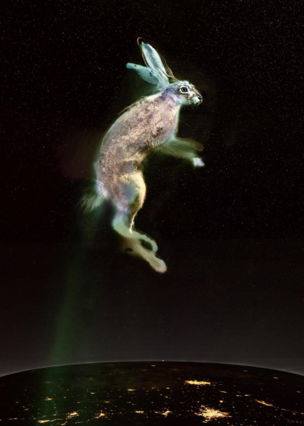 Vincent rises in the stratosphere, over night-cities, on a line of zodiacal light - last astronaut of the Rex Hares