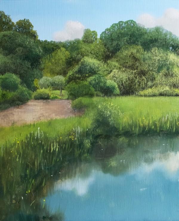 Arnold Arboretum by Paul Beckingham