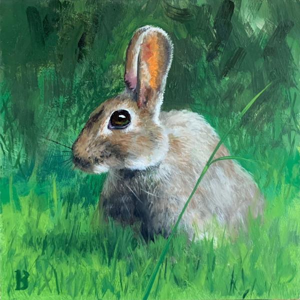 Rabbit by Paul Beckingham