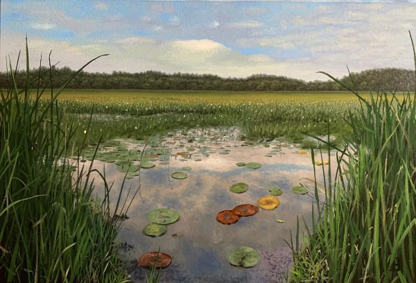 Great Meadows by Paul Beckingham