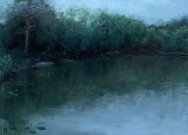 Westville Pond by Paul Beckingham