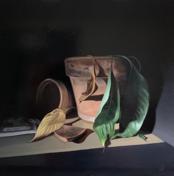 Flower Pots by Paul Beckingham