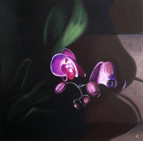 Qi's Orchid Blooms by Paul Beckingham