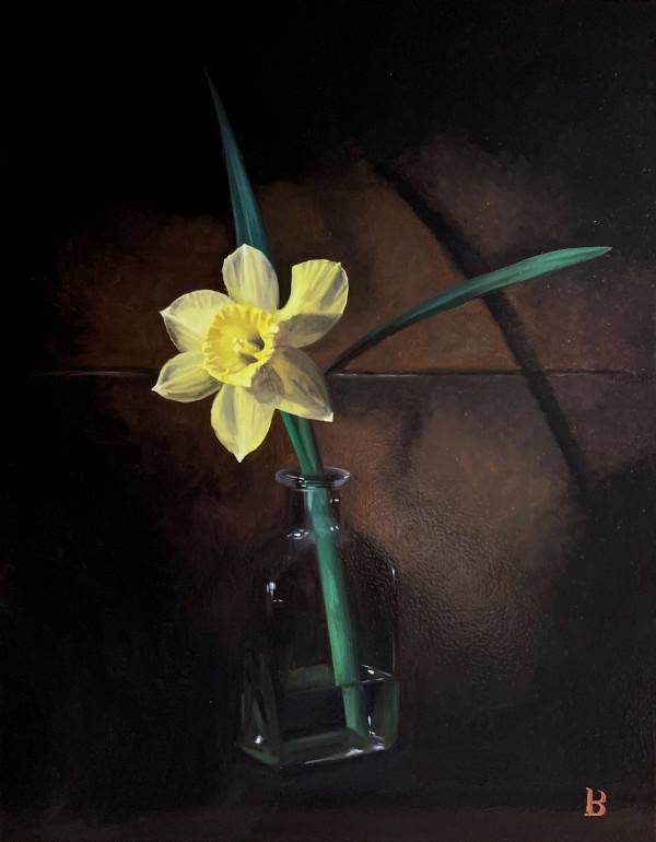 Daffodil by Paul Beckingham