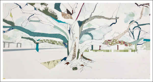 "Audubon Park Tree I  29° 56' 01"" N 90° 07' 21.5"" W by Jill Lear"