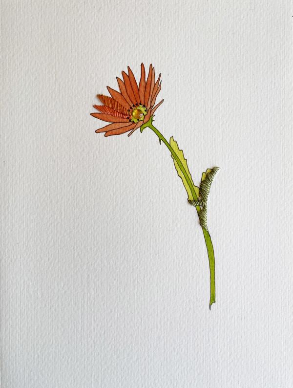Daisy Orange IV by Jill Lear