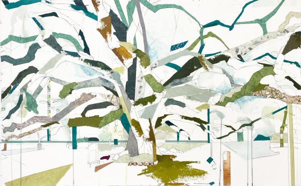 """29° 45' 45"""" N 95° 23' 08"""" W Glenwood Oak VIII, 2020 by Jill Lear"""