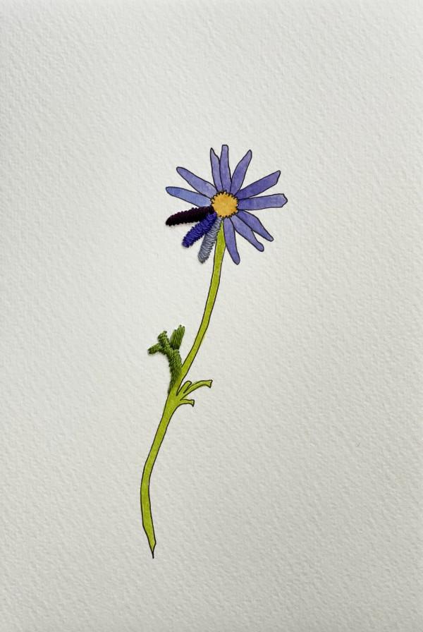Periwinkle Flora II by Jill Lear