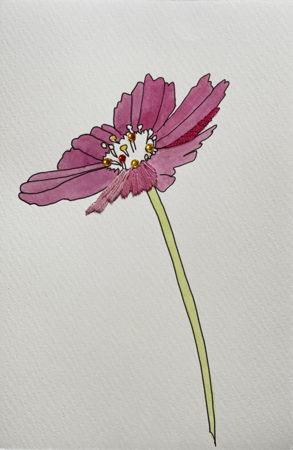 Pink Cosmos I by Jill Lear