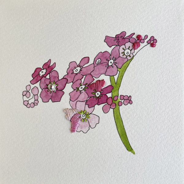Pink Forget Me Not II by Jill Lear