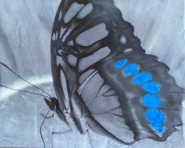 Blue Butterfly by Kathie Collinson