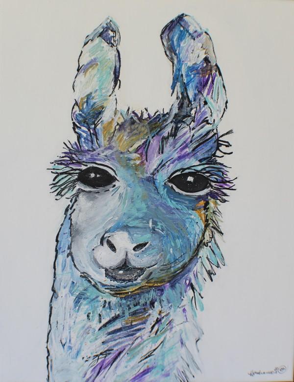 One llama by Heather Medrano