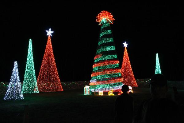 Christmas Glow by Y. Hope Osborn