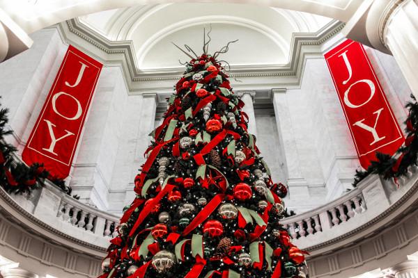 Capital Christmas Color by Y. Hope Osborn