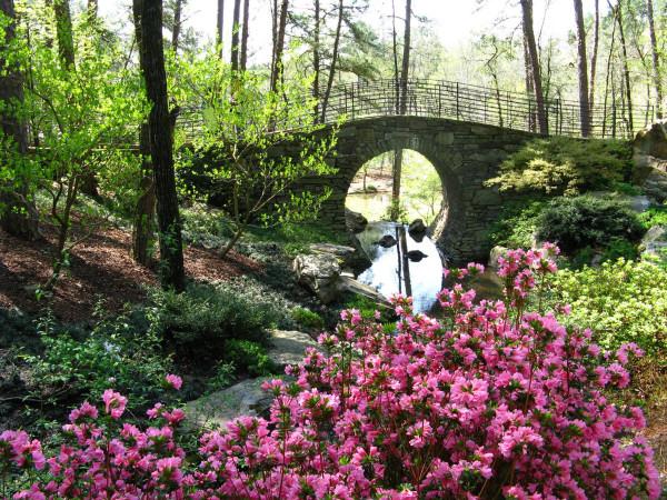 Moon Bridge in Spring by Y. Hope Osborn