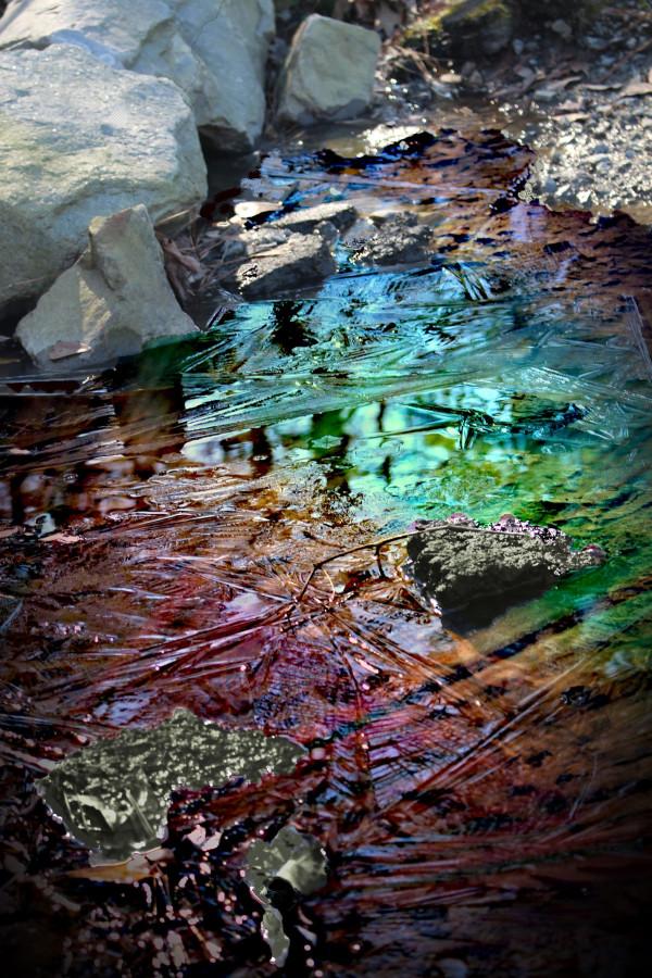 Prism by Y. Hope Osborn