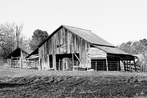 Ranch-hand by Y. Hope Osborn