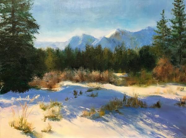 Alberta Shadows by Judy Maurer