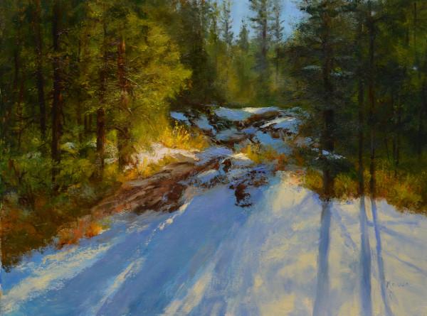 Alberta Light by Judy Maurer