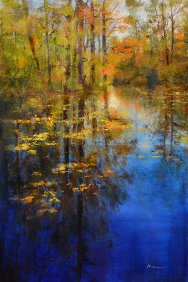 Under Florida Skies by Judy Maurer