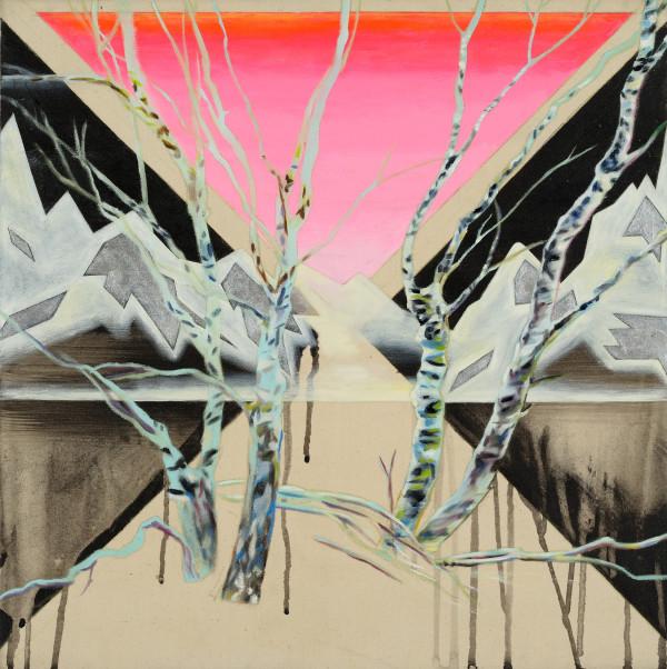 Transform fault by Anne Wölk