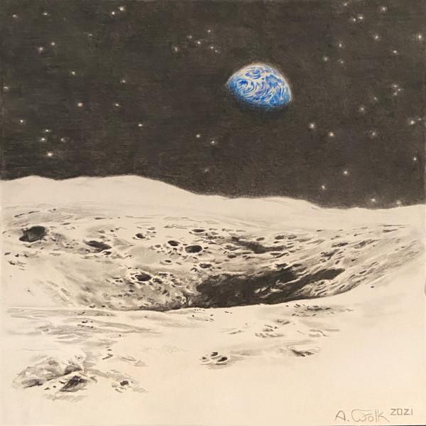 Life on Earth by Anne Wölk