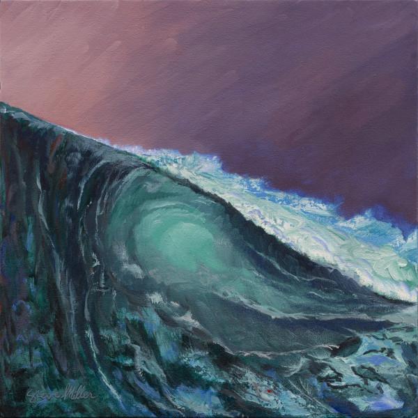 2nd Wave by Steve Miller
