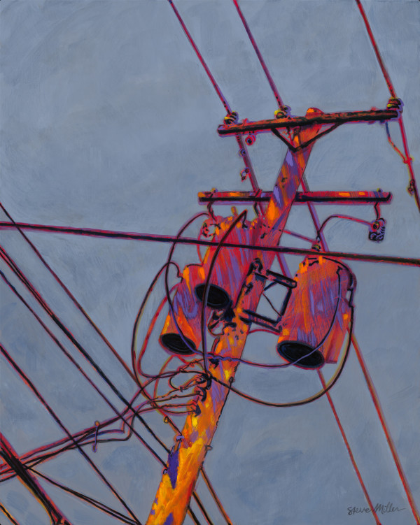 Electric Pole by Steve Miller