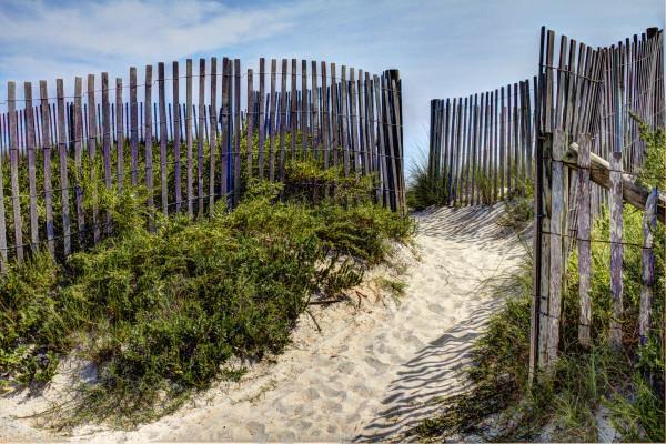 Fenced Beach Path by Rene Griffith