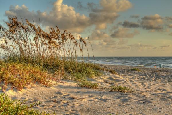 Indialantic Beach I by Rene Griffith