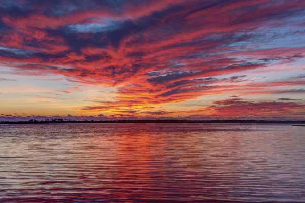 Sailor's Delight by Rene Griffith