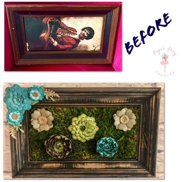 Custom Framed Succulent by Mallorie Evans