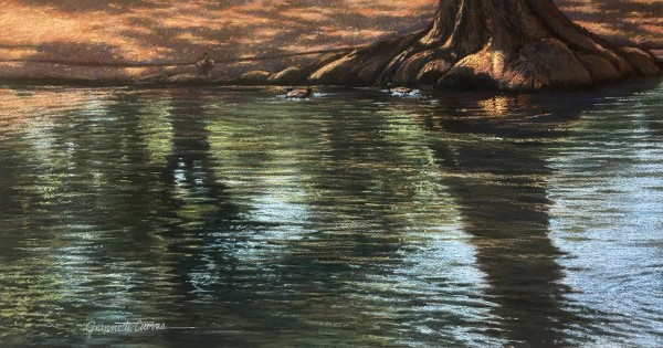 Lazy Reflections On The Comal by Jeannette Cuevas