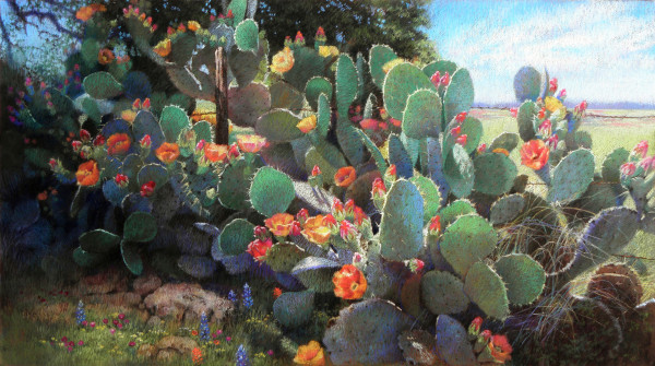 Remembrances Of South Texas by Jeannette Cuevas