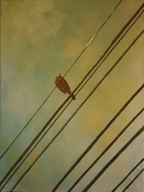 Highwire Bird by Rebecca Prince
