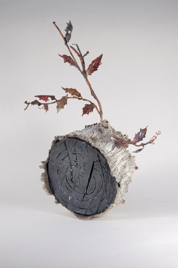 Secret Life of ... stumps by Beth Kamhi