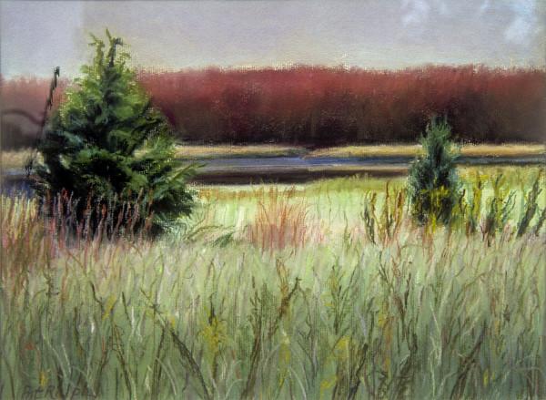 Autumn Marsh II by Pat Ralph