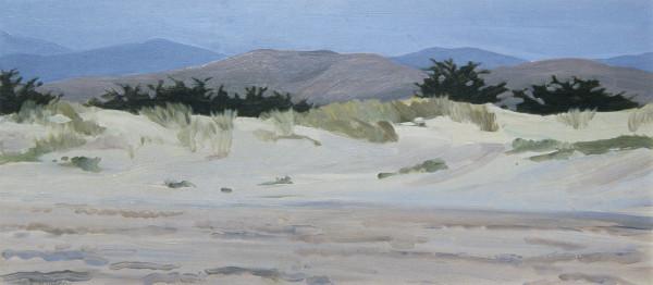 Dunes at Morro Bay by Pat Ralph
