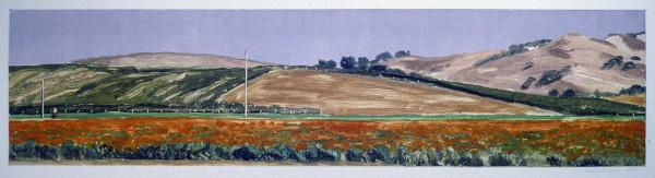 Marigold Farm Near Lompoc by Pat Ralph
