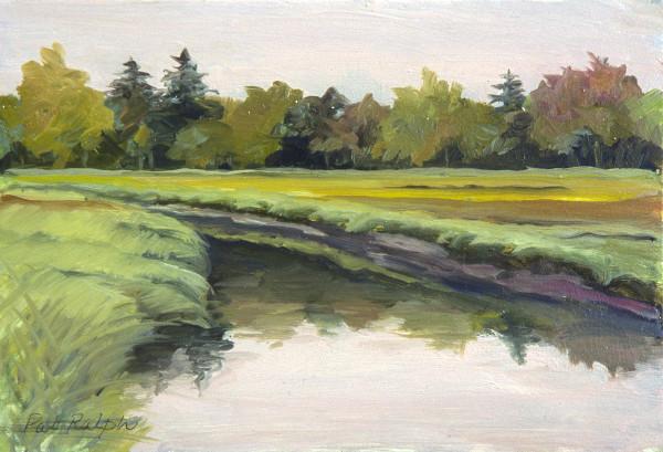 Meadow Marsh by Pat Ralph