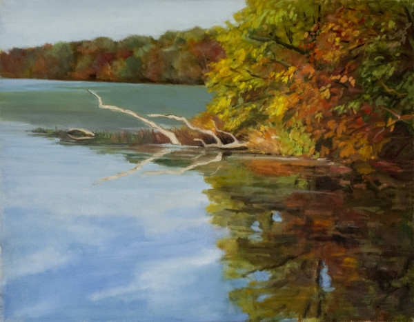Untitled #292 (Fall Reflections) by Pat Ralph