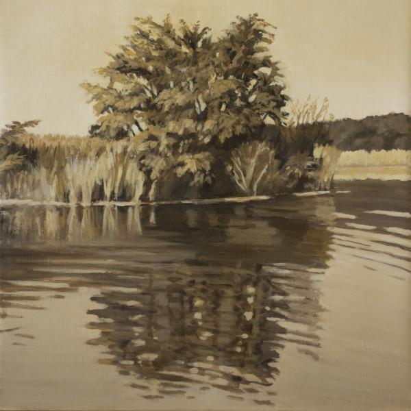 Untitled #330 (Remembering Long Island: Sunken Meadow) by Pat Ralph