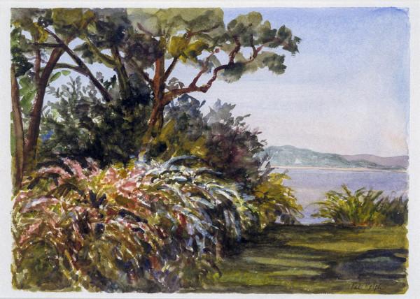 Weigela in Bloom by Pat Ralph