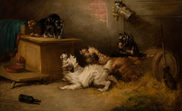 Antagonizing the Barn Cat by George Armfield